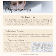 Opportunities Career Report