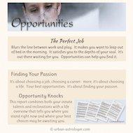 Opportunities Career Report