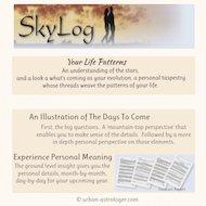 Sky Log Forecast Report